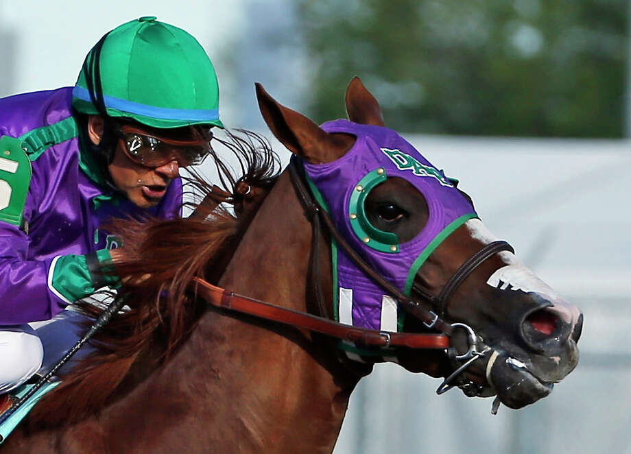 California Chrome's nasal strip above his nostrils was as clear as his victory in the Kentucky Derby. Photo: Matt Slocum, STF / AP