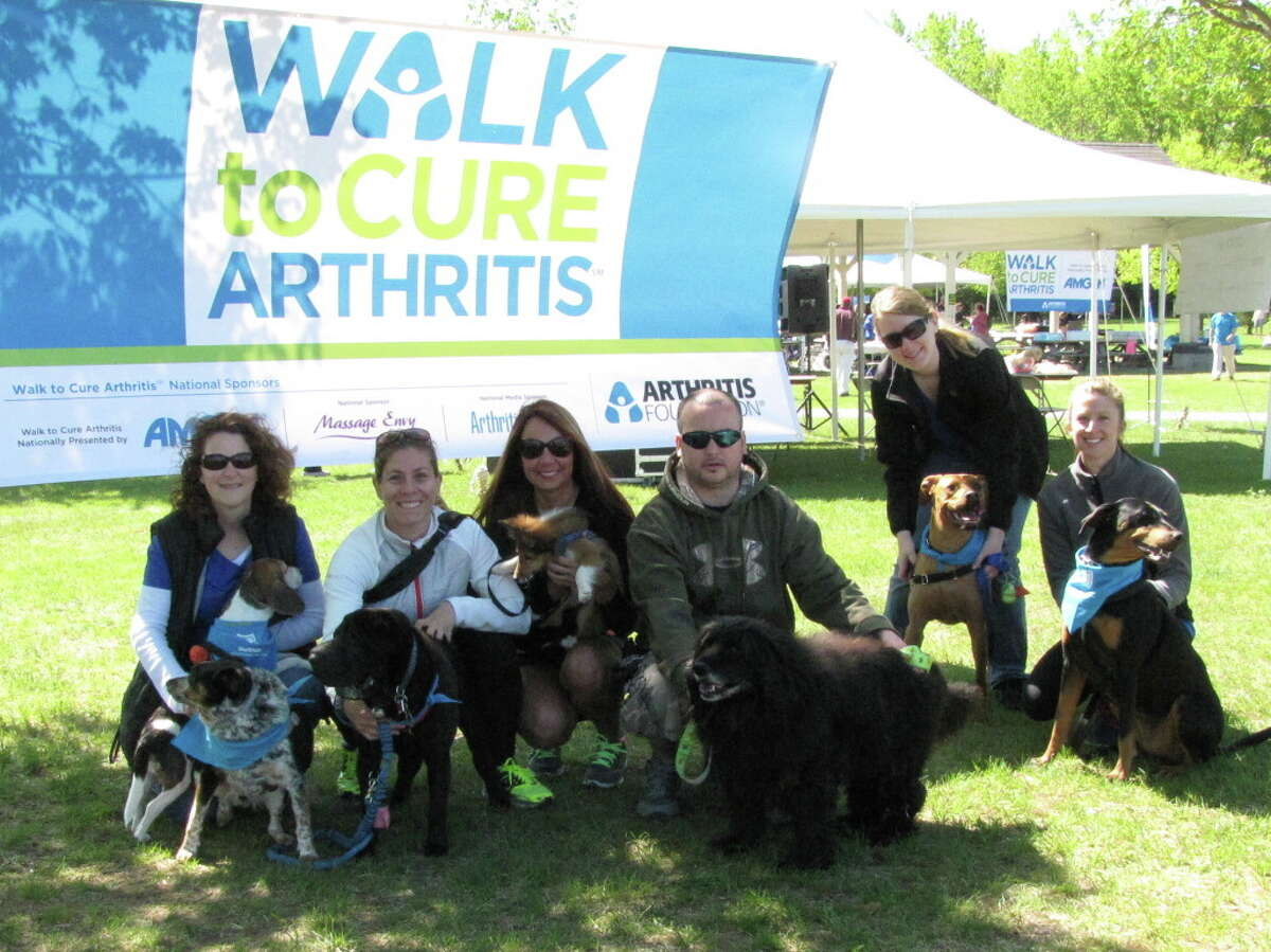 Were you Seen at the Arthritis Foundation of Northeastern NY's Walk to Cure Arthritis held at The Crossings in Colonie on Sunday, May 18, 2014?