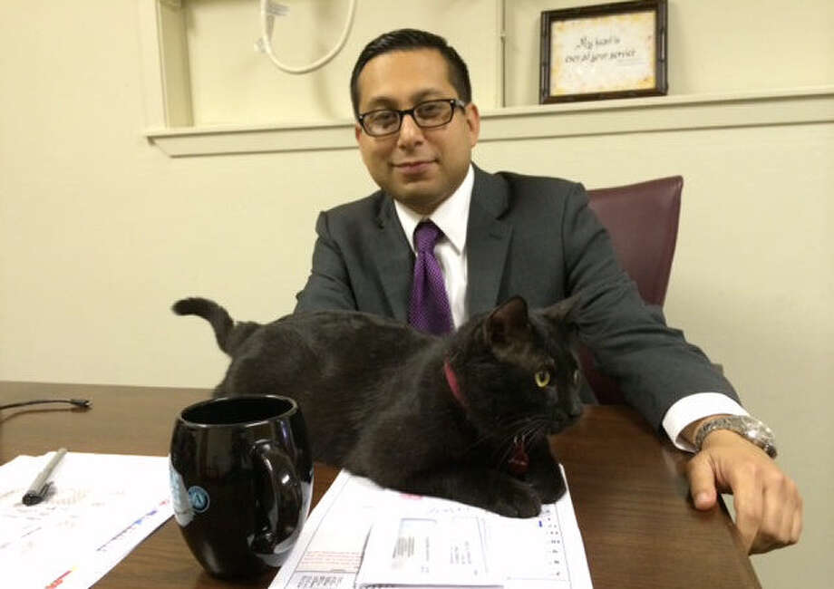 District 1 Councilman Diego Bernal watches Council Cat, the office mascot his staff adopted from Animal Care Services. Photo: Vincent T. Davis / Southside Reporter