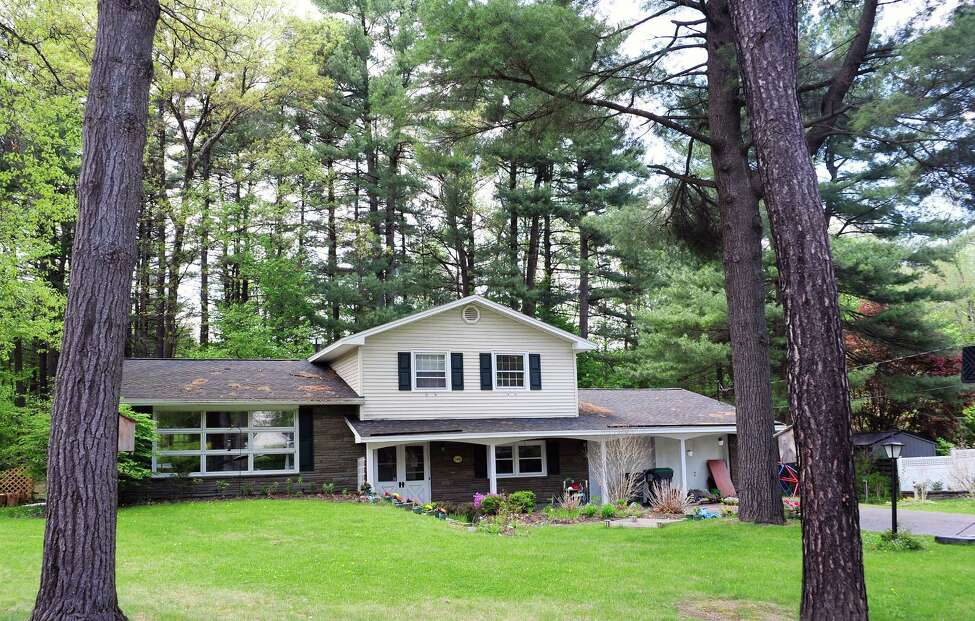 The desire by one resident of Mohawk Drive in Guilderland to keep chickens has launched a debate over whether the animals are appropriate in suburban neighborhoods. (Paul Buckowski / Times Union)