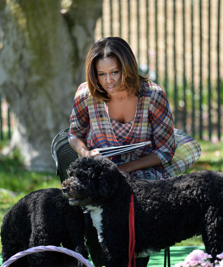 U.S. first lady Michelle Obama with Bo and Sunny. Photo: Pool, Getty Images / 2014 Getty Images