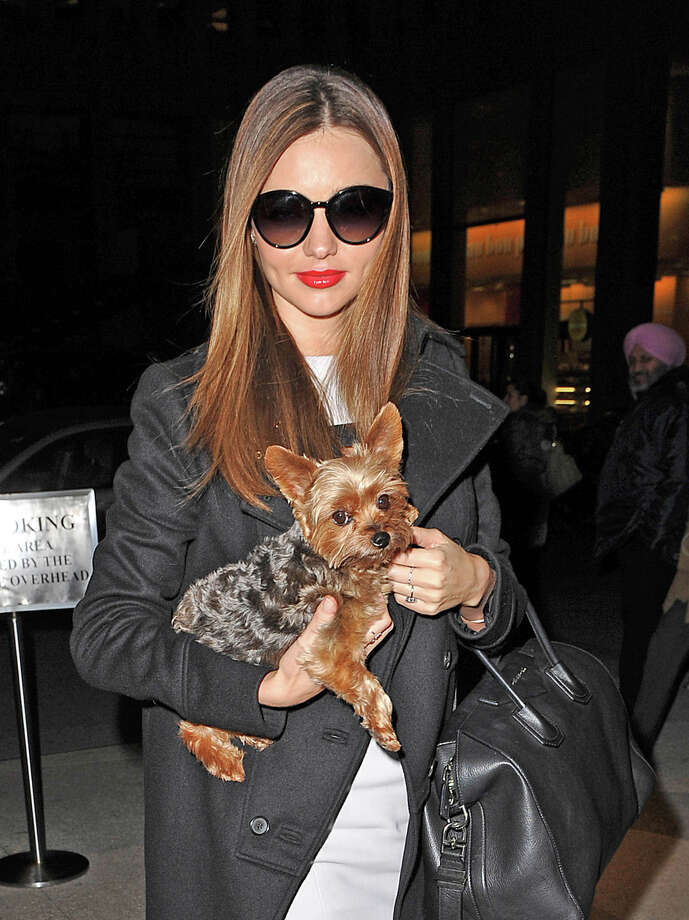 Model Miranda Kerr. Photo: NCP/Star Max, Getty Images / 2013 Star Max