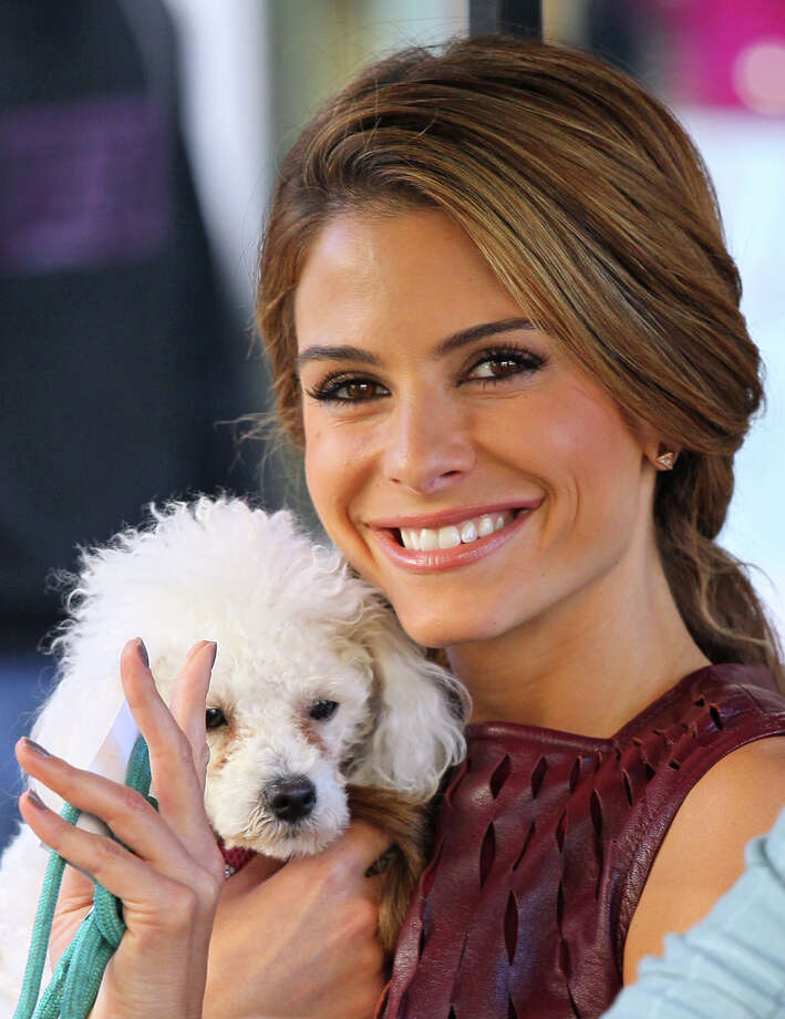 Maria Menounos. Photo: JB Lacroix, Getty Images / 2012 JB Lacroix
