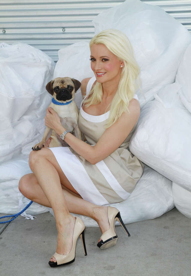 TV personality and Playmate  Holly Madison. Photo: Marcel Thomas, Getty Images / 2012 Marcel Thomas