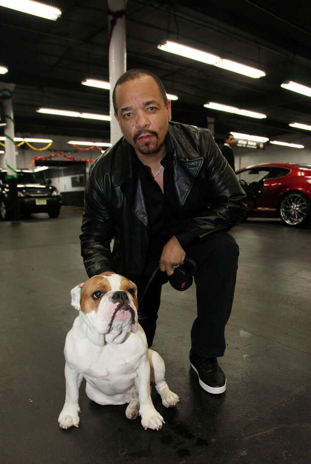 Ice-T and his dog Spartacus. Photo: Johnny Nunez, Getty Images / 2011 Johnny Nunez