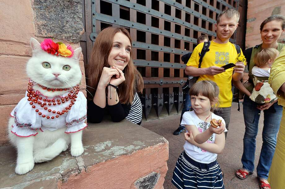 We feel your pain, Fluffy: A cat wears a vyshyvanka, a traditional embroidered shirt, during the spring Vyshyvanka Mega March in Kiev. While the Mega March is nonpolitical, this year it carries special significance as its aim is to preserve a united Ukraine. Photo: Sergei Supinsky, AFP/Getty Images