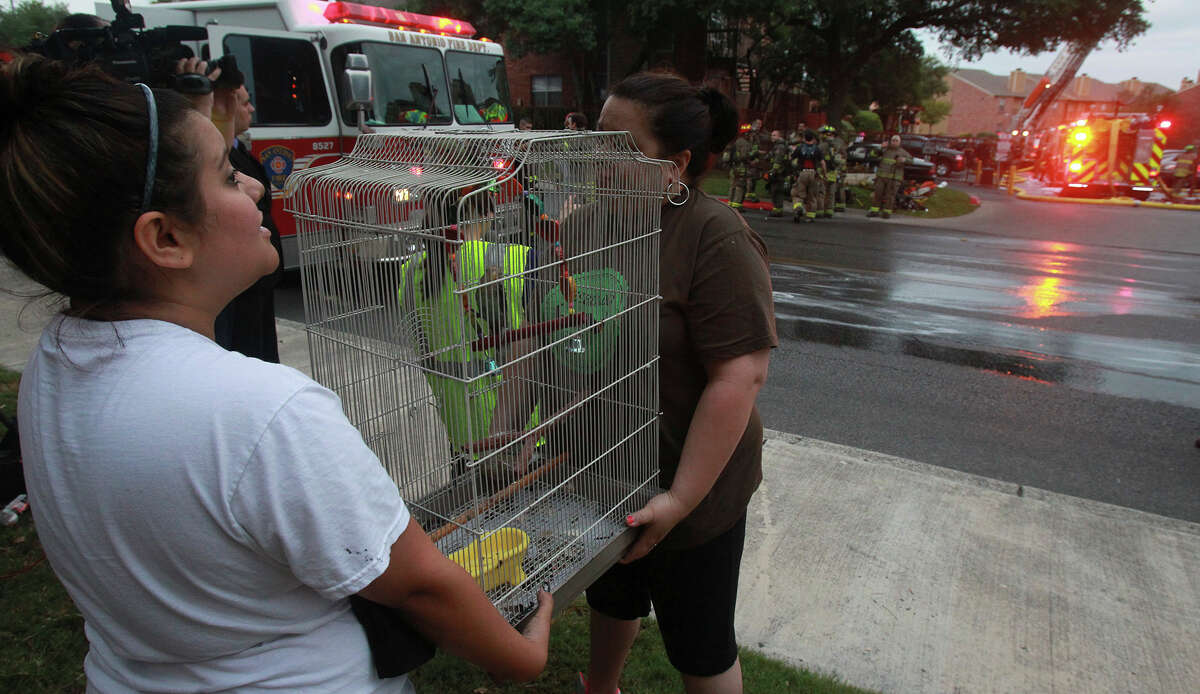San Antonio fire crews battled an apartment fire in the 8000 block of Oakdell Way on the Northwest Side. Two parakeets were rescued.