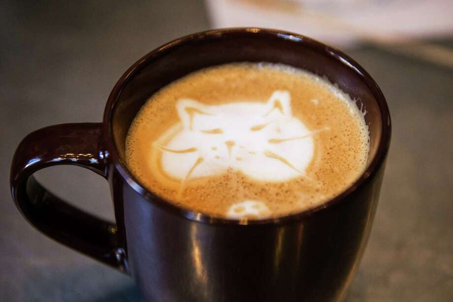 "NEW YORK, NY - APRIL 24:  A ""cat'achino"" is seen at the pop-up shop ""Cat Cafe"" on April 24, 2014 in New York City. The cafe, which has been created Purina One cat food, serves complimentary coffee and bakery items, and has a variety cats roaming throughout the space that visitors can adopt.  (Photo by Andrew Burton/Getty Images) Photo: Andrew Burton, Staff / 2014 Getty Images"