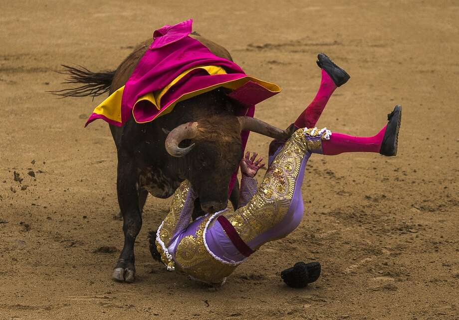 Spanish bullfighter Antonio Nazare is tossed by a bull during a bullfight at Las Ventas bullring in Madrid. Photo: Andres Kudacki, Associated Press