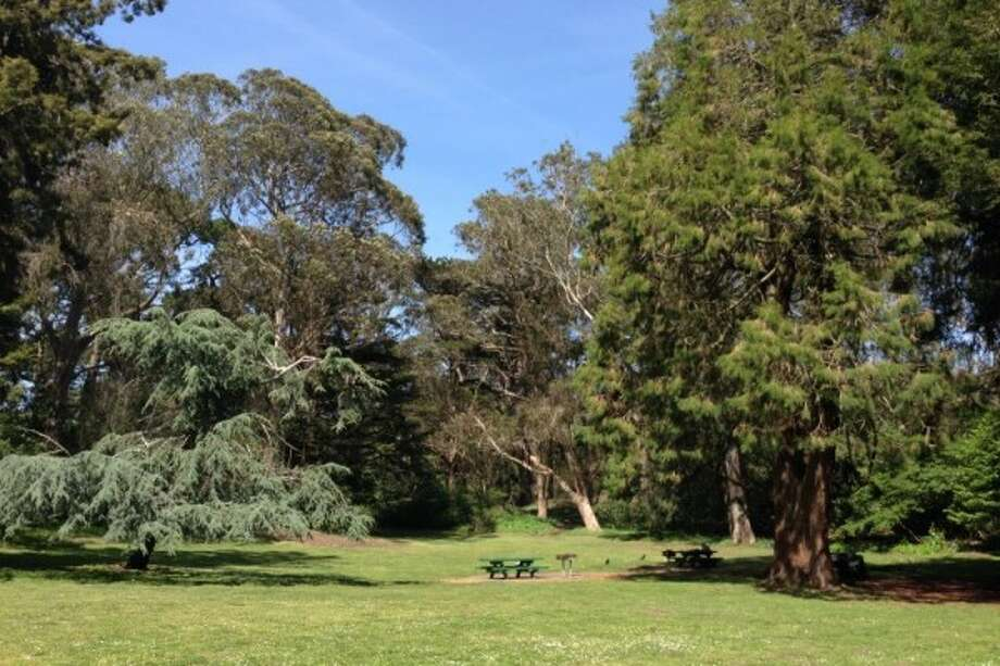 There are two separate grilling areas in the Elk Glen Picnic Area in Golden Gate Park. Photo: S.F. Rec And Park Department