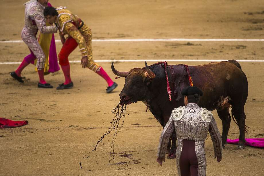 Spanish bullfighter Jimenez Fortes, top second left, kills a Los Chospes ranch fighting bull after being tossed by the bull during a bullfight at Las Ventas bullring in Madrid, Spain, Tuesday, May 20, 2014. Photo: Andres Kudacki, Associated Press