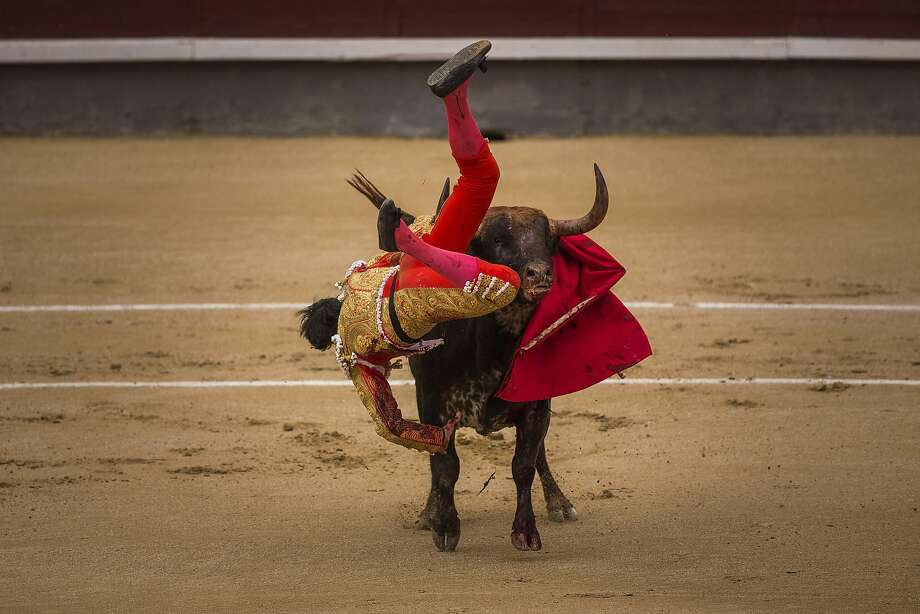 Spanish bullfighter Jimenez Fortes, is tossed by a Los Chospes ranch fighting bull during a bullfight at Las Ventas bullring in Madrid, Spain, Tuesday, May 20, 2014. Photo: Andres Kudacki, Associated Press
