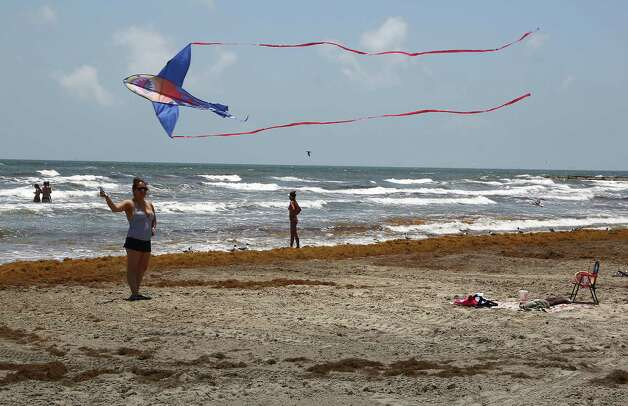 Jennifer Forero flies a kite on the beach near 30th street as mounds of seaweed build up on the beach Thursday, May 22, 2014, in Galveston. Photo: James Nielsen, Houston Chronicle / © 2014  Houston Chronicle