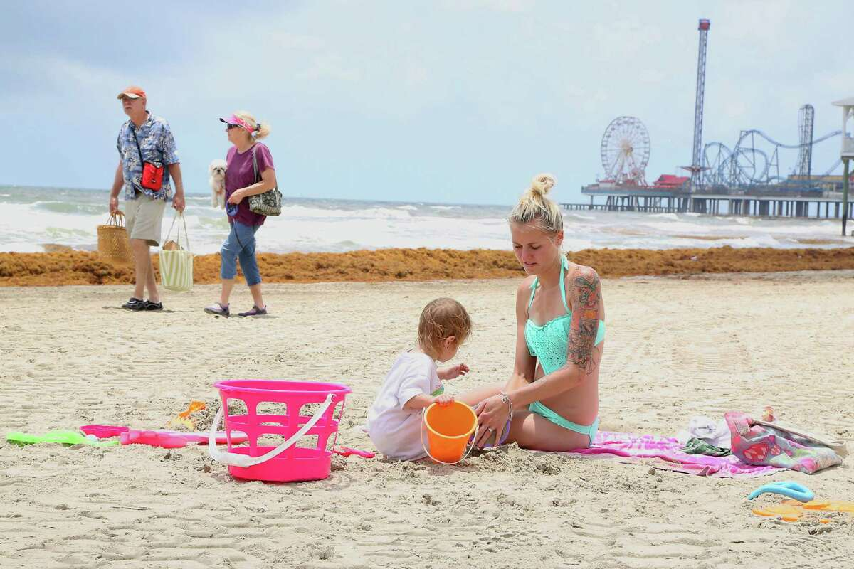 Katelyn Lowery right, and her 23 month-old daughter Johnsie Lowery 2nd from right, play in the sand as mounds of seaweed build up on the beach near 21st street Thursday, May 22, 2014, in Galveston.