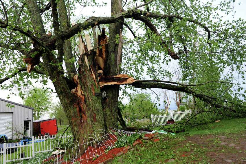 Limbs fell off a tree in the wake of a fast-moving storm on Darlene Pettit's property on Thursday, May 22, 2014, in Duanesburg, N.Y. (Cindy Schultz / Times Union)