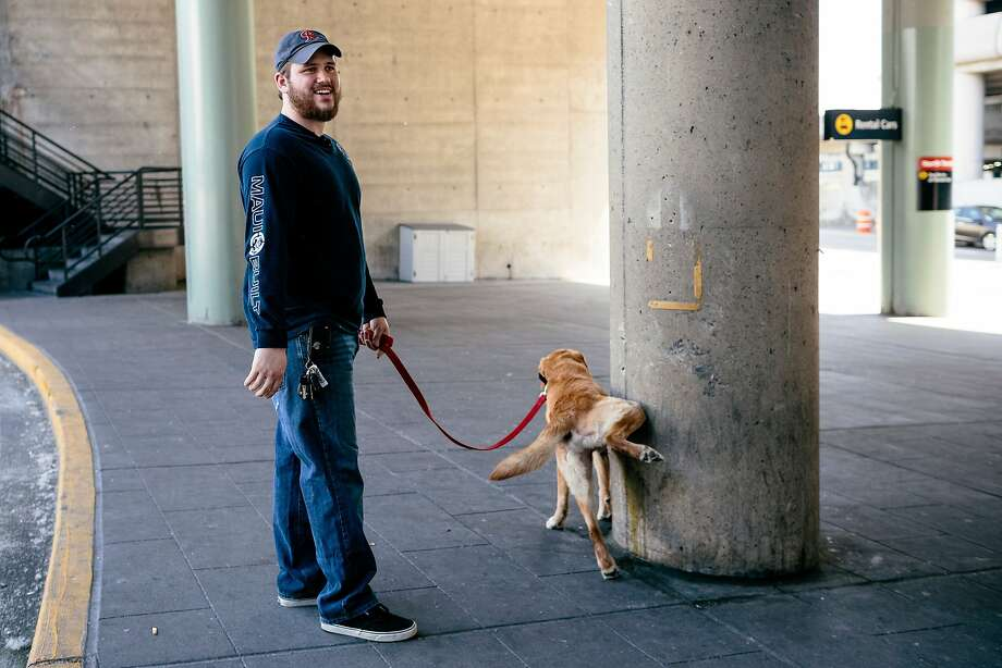 Hey, it was a long flight:Former Marine Sgt. Deano Miller is reunited with Thor, the military K-9 he served with in Afghanistan, after the pooch arrived at Seattle-Tacoma International Airport. Or rather, he will be after Thor relieves himself. Photo: Jordan Stead, Associated Press