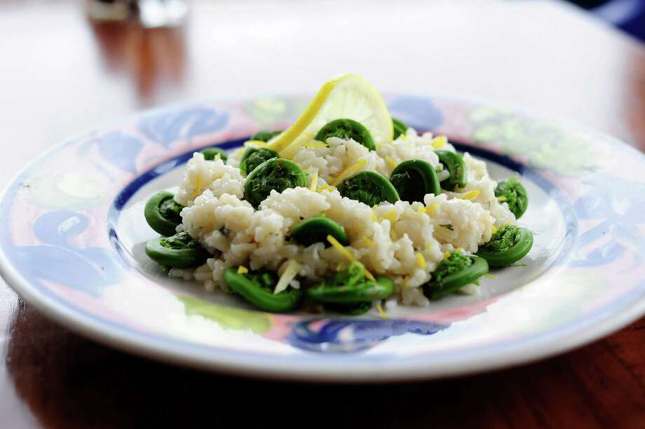 A view of a dish of lemon zest risotto with fiddlehead ferns, photographed at Villago Pizzeria & Ristorante on Thursday, May 15, 2014, in Ballston Lake, N.Y.   (Paul Buckowski / Times Union) Photo: Paul Buckowski / 00026909A