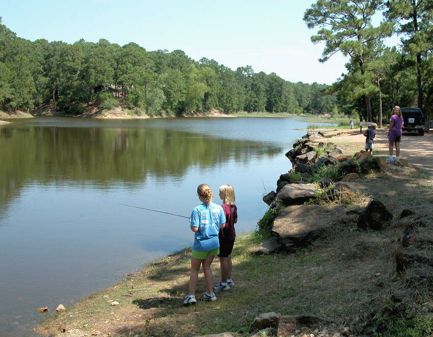 BASTROP (freshwater): FAIR. Clear to slightly stained; 84-88 degrees; 0.80' low. Largemouth bass are good on Texas rigged plastic worms and Carolina rigs and you will find them on edges of vegetation and creek beds with sharp drop offs. Crappie are fair on jigs and live bait. Channel and blue catfish are fair on stinkbait or cutbait, and flathead catfish are fair on live bait. Creek channels and near the plant seem to be the best spots