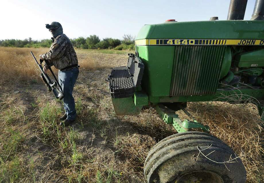 Alejandro Gonzalez, an exotic control agent for the State of Chihuahua, gets his rifle as he prepares to hide in a blind set up in the cab of an old tractor, waiting for hogs to enter the trap on a farm just outside Ojinago, MX.  Tuesday, May 13, 2014. Photo: BOB OWEN, San Antonio Express-News / © 2012 San Antonio Express-News