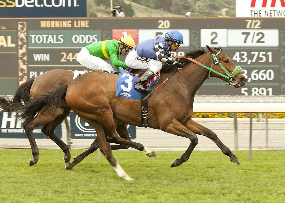 Stormy Lucy, acquired by Steve Moger before winning the Santa Barbara Handicap, will try to win the Gamely Stakes on Monday. Photo: Benoit Photo