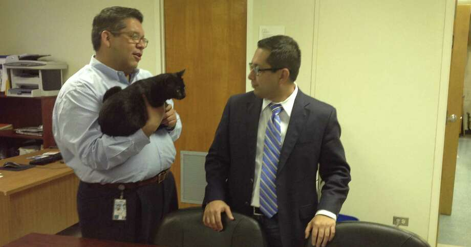 Staff member Fred Chapa, left, talks to Councilman Diego Bernal while holding Council Cat, the office mascot adopted from Animal Care Services. Photo: Vincent T. Davis / Alamo Heights Weekly