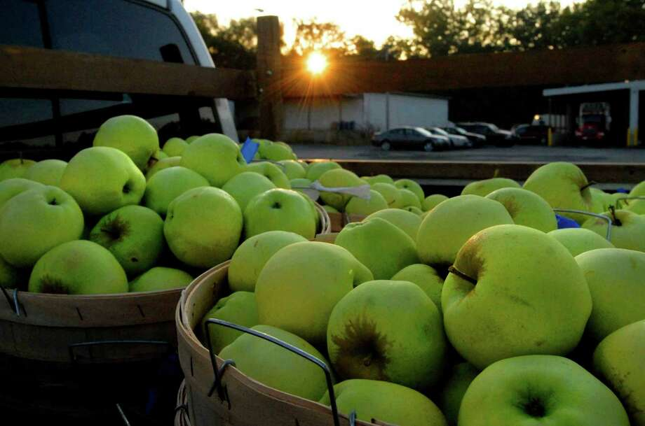 Capital District Farmers Market, May-October, 9 a.m. to 1 p.m., Saturdays, 381 Broadway, Menands. Visit Web site. Photo: MICHAEL P. FARRELL, ALBANY TIMES UNION / 00005294A