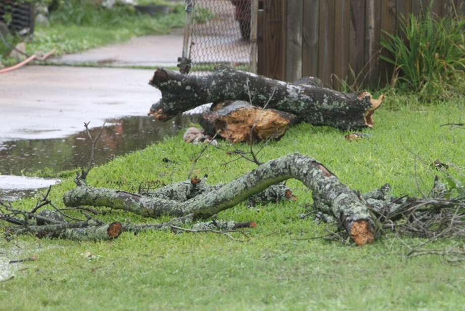 Fallen branches were found near the scene of a body found in northeast Houston, May 27, 2014. (Cody Duty / Houston Chronicle)
