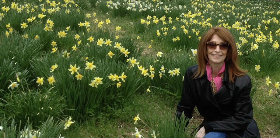 Judy Sanders, was photographed this spring by her sister amid a field of daffodils in the Berkshires.