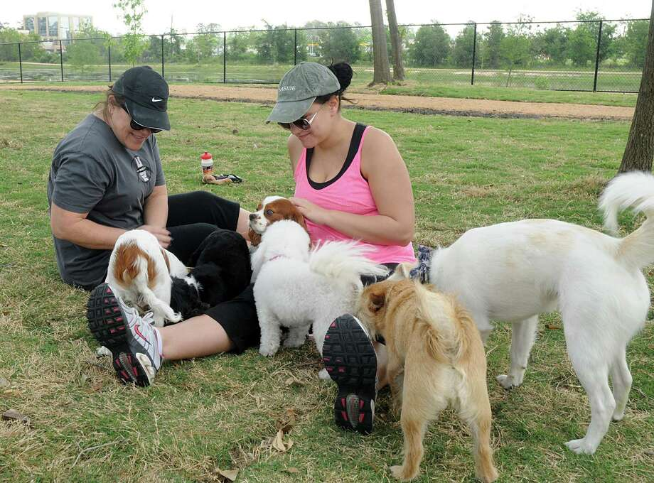 Carla and Taylor Rogers, of Spring with visit with friendly dogs in the small dog section of the new dog park in Meyer Park. Photo: David Hopper, Freelance / freelance