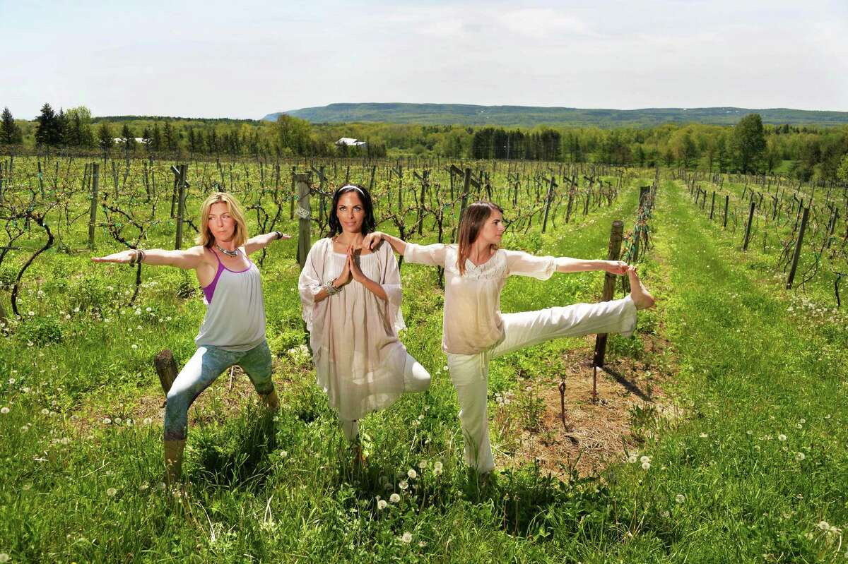 From left, Lisa O'Brien of Lifeyum, Franca DiCrescenzo of Armida Rose Realty and Gina Tralongo of Freestyle Fitness & Yoga strike yoga poses promoting the upcoming Vinyoga Festival at the Altamont Vineyard Winery Wednesday May 21, 2014, in Altamont, NY. (John Carl D'Annibale / Times Union)