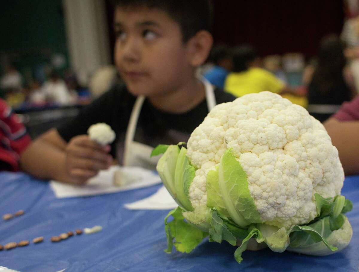Students sample cauliflower as children from Briscoe Elementary School participated in Veggie Fest sponsored by Recipe for Success Friday, May 23, 2014, in Houston. Fourth and fifth-graders did taste testings, learned about fruits and vegetables through education and games.( Johnny Hanson / Houston Chronicle )