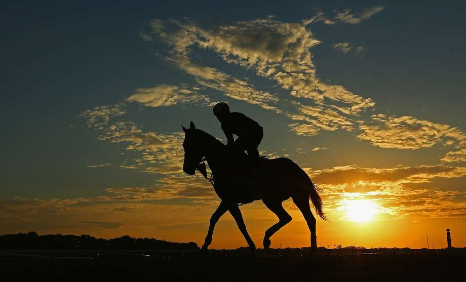 ELMONT, NY - MAY 27:  A horse and exercise rider train during sunrise at Belmont Park on May 27, 2014 in Elmont, New York.  (Photo by Al Bello/Getty Images) *** BESTPIX *** Photo: Al Bello, Getty Images