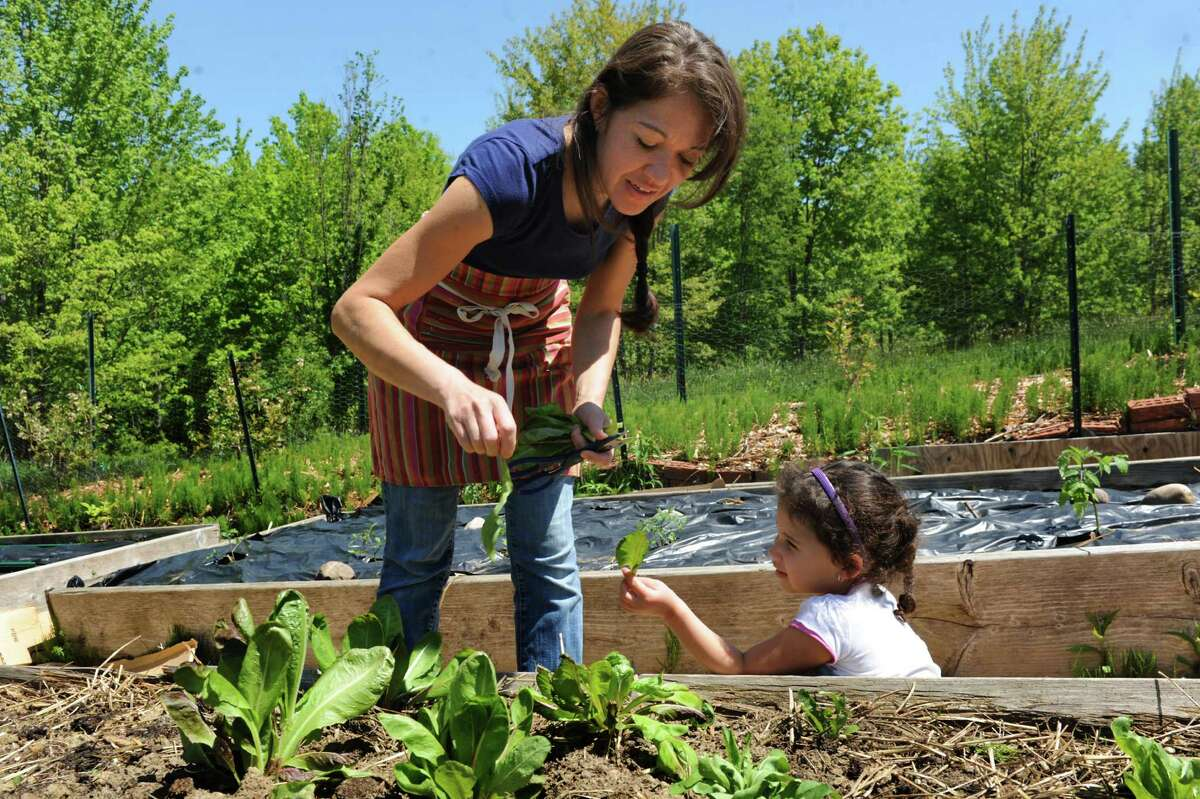 Ellie Markovitch, left, picks greens from her garden with her daughter Lara, 4, on Wednesday, May 21, 2014, at their home in Brunswick, N.Y. (Cindy Schultz / Times Union)