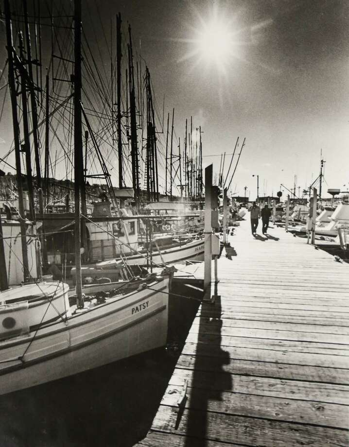 April 19, 1982Bright sun and promise of warm days brought out sightseers and some maintenance crew to Fishermen's Terminal where many commercial fishing craft are moored. Photo: FILE PHOTO, SEATTLEPI.COM / SEATTLEPI.COM
