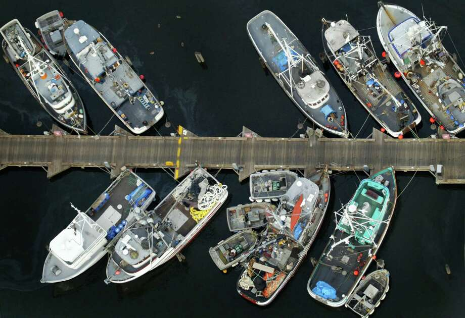 June 12, 2007Fishing vessels moored at one of the docks at Fishermen's Terminal are shown. Photo: FILE PHOTO, SEATTLEPI.COM / SEATTLEPI.COM