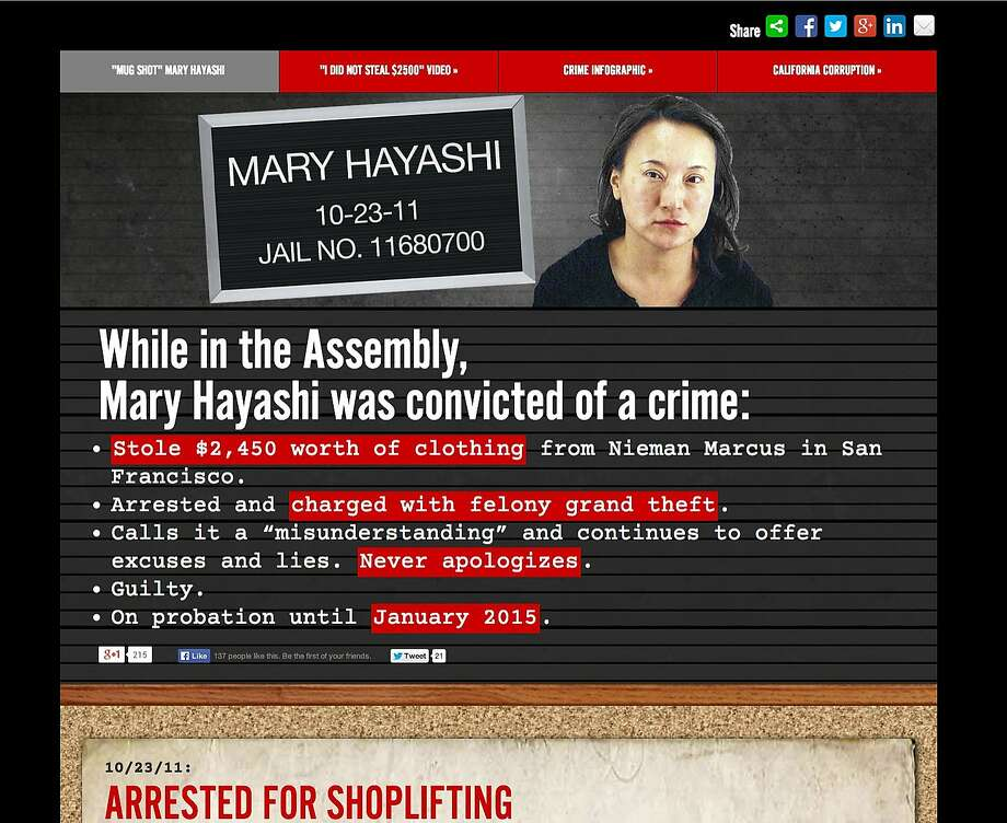In Senate District 10, the two Democrats are hitting each other with harsh websites. Photo: Screen Shot, Mugshotmary.com