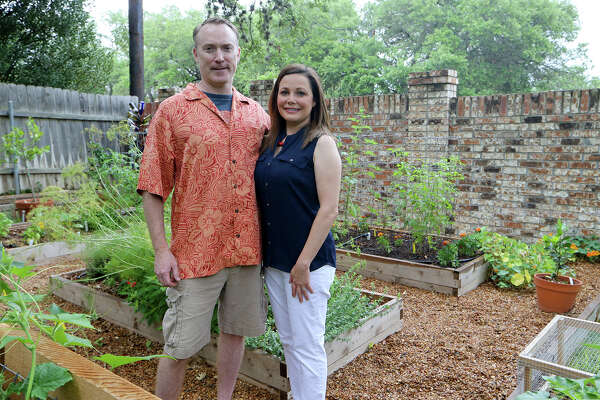 Stephanie and Todd Lanier in their back yard garden on Sunday, May 25, 2014. MARVIN PFEIFFER/ mpfeiffer@express-news.net