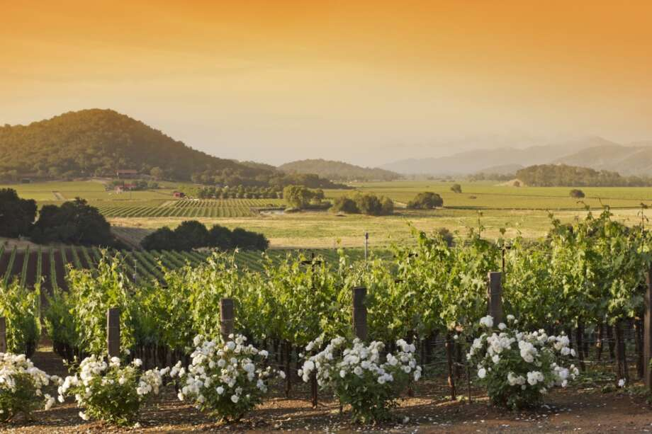 Napa, Calif., is another attractive option, with 57,923 homes, worth $29.5 billion. Photo: Creativeye99, Getty Images