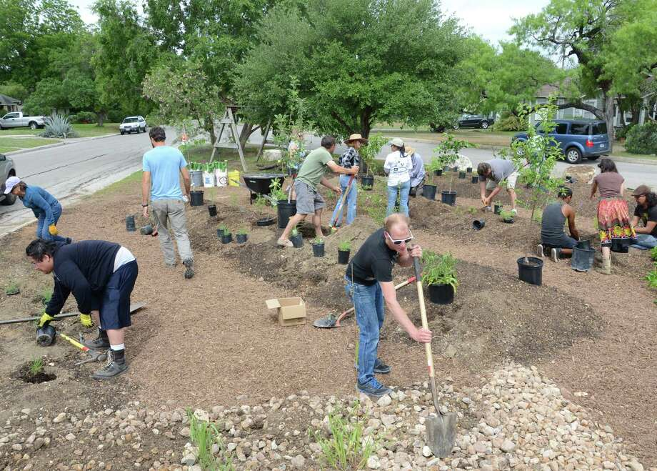 Bill Martinez (left), Jamie Calberg (center) and other volunteers sculpt berms and swales at Olmos Park Terrace Community Garden. Photo: Courtesy David Baker