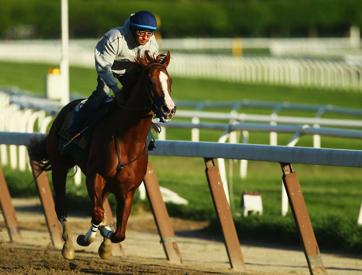 ELMONT, NY - MAY 31: Kentucky Derby and Preakness winner California Chrome with Jockey Victor Espinoza up trains at Belmont Park on May 31, 2014 in Elmont, New York. He is scheduled to race for the Triple Crown in the 146th running of the Belmont Stakes (Photo by Al Bello/Getty Images)