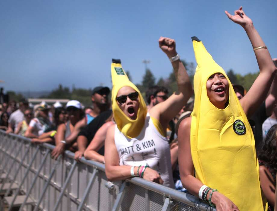Two fans in banana costumes cheer during Matt and Kim's performance at the 2014 Bottlerock Napa Valley music, food and wine festival on Saturday, May 31, 2014 in Napa, Calif. Photo: Kevin N. Hume, The Chronicle