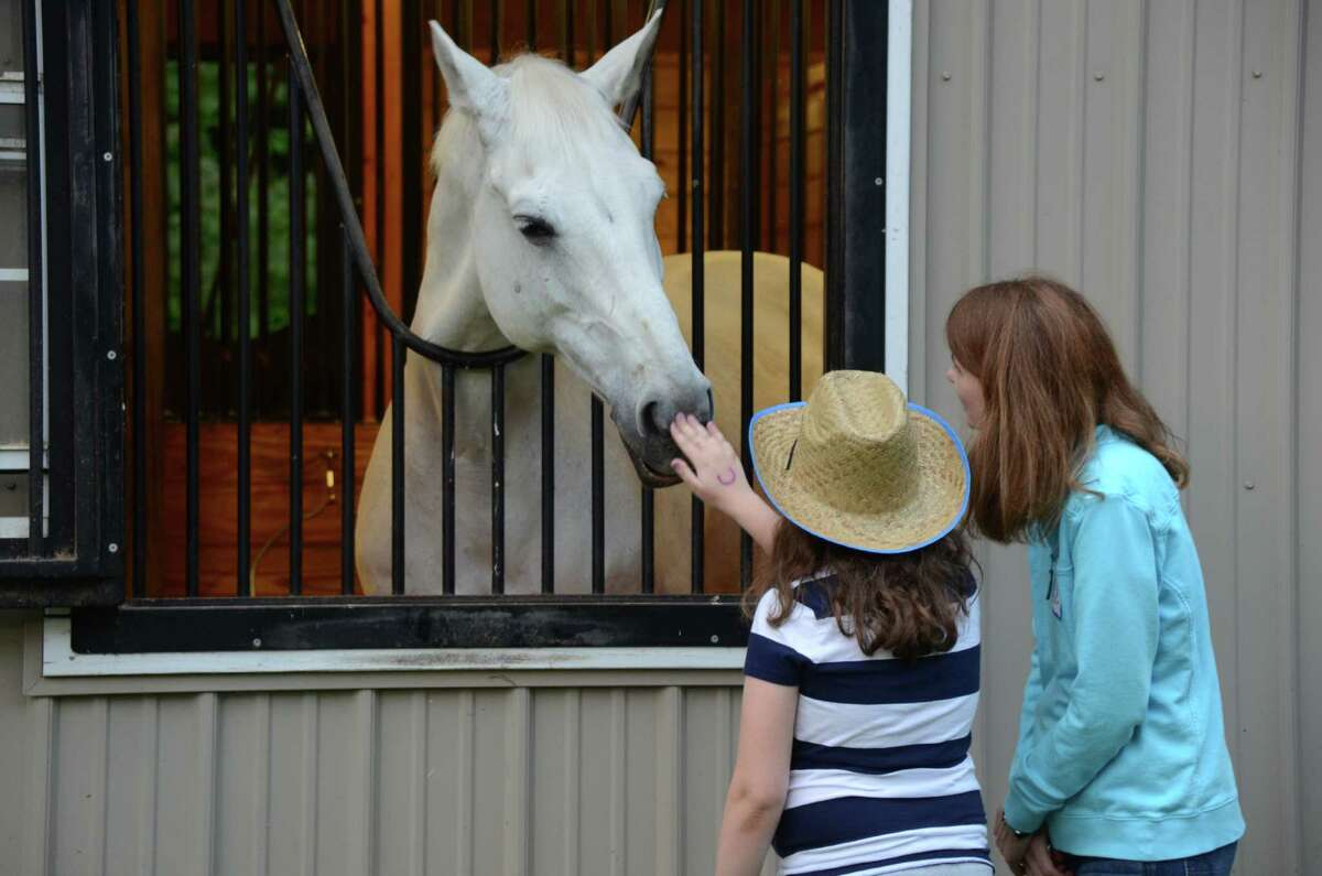 Alumna Patty Proctor and her daughter Taylor, pat one of the horses during New Canaan Mounted Troop's 75th Anniversary Party on Saturday, May 31, 2014.