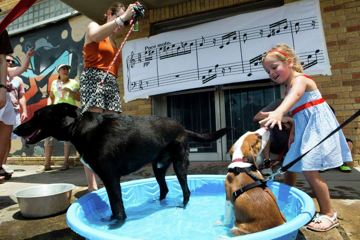 Tiffany Saxton, left, takes her dog Dante to a kiddie pool to relive from the heat her four-year-old dog, while Devin Dyer, right, 4, pets Loddie during the final day of Sunday Streets HTX, Sunday, June 1, 2014, in Washignton Avenue. A stretch of Washignton Avenue, from Studemont to Milam closed for cycling, waking and recreation as part of an effort to promote outdoor activities in the city of Houston.