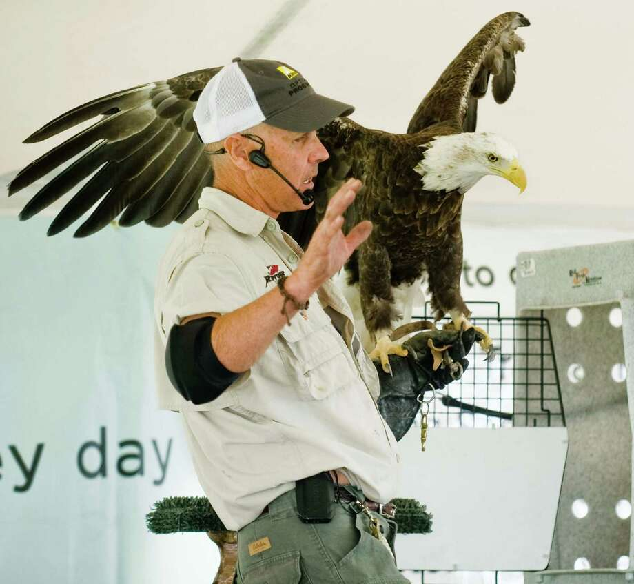 Jonathan Wood of the Raptor Project talks about his bald eagle during the tent show at the 22nd annual Birds of Prey Day at Green Chimneys in Brewster, N.Y. June 1, 2014 Photo: Scott Mullin / The News-Times Freelance