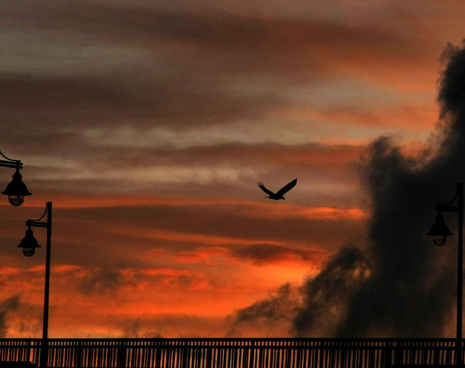 A bird flies over the Manette Bridge at sunset in Bremerton, Wash. Photo: Larry Steagall, Associated Press