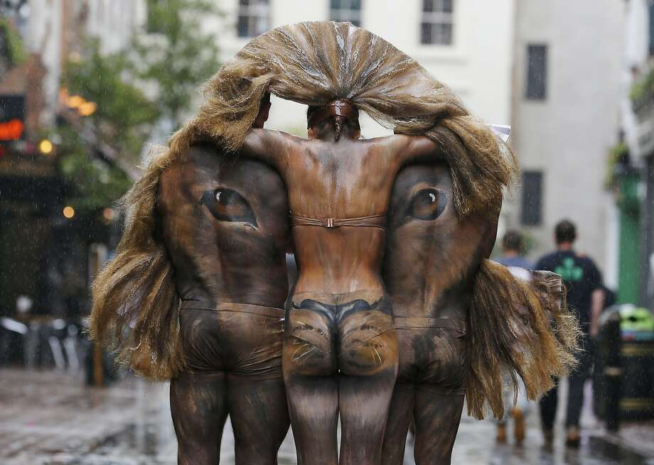 Does this make my butt look endangered?A triptych of hand-painted models depict a lion's head on London's Carnaby Street to promote the London Zoo's Lions400 campaign, an effort to save the Asian lion. Photo: Lefteris Pitarakis, Associated Press