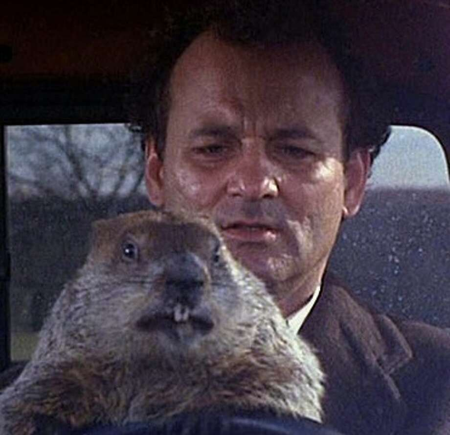 "Bill Murray gave one of his best performances as a weatherman caught in a time loop in ""Groundhog Day."" Photo: Columbia Pictures / ONLINE_YES"