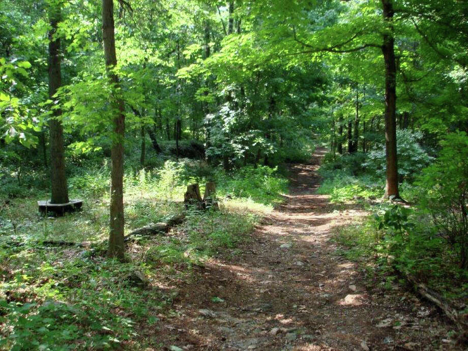 Celebrate the outdoors with the Darien Land Trust on Sunday, June 8, from 11 a.m. to 3 p.m., on the trails of Dunlap and Selleck's woods. Photo: Contributed Photo / Darien News