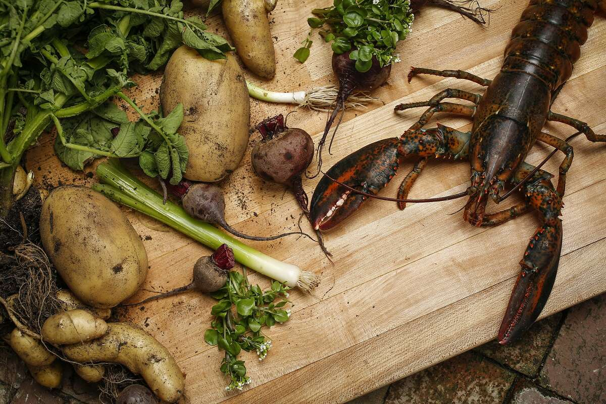 The elements of The French Laundry's Beets and Leeks dish including Maine lobster, ruby beets, garden leeks, watercress, and potatoes are seen at The French Laundry on Thursday, May 29, 2014 in Yountville, Calif.