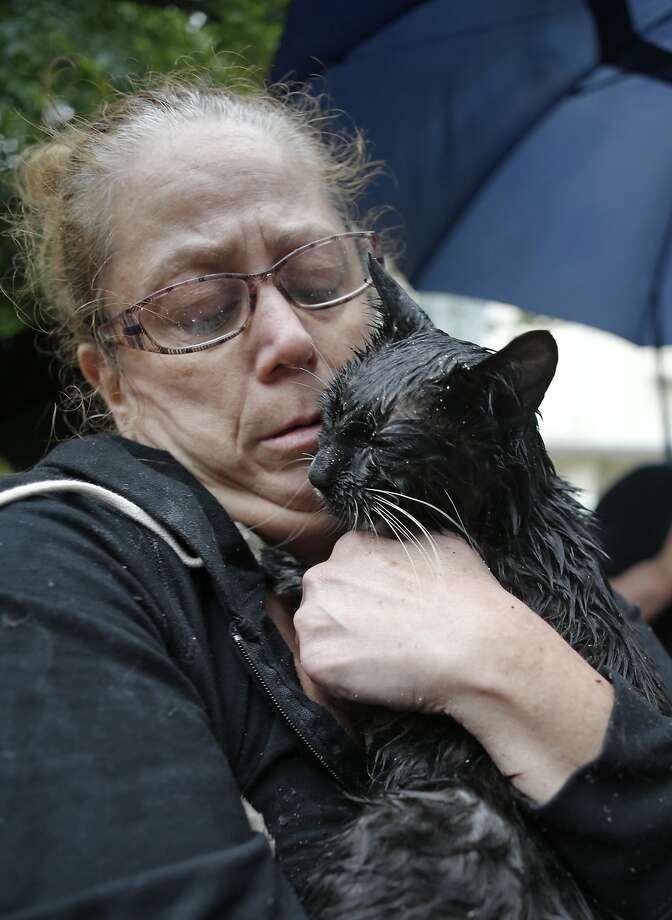 Zack down to 8 lives:Cindy Piscopo cuddles her very wet cat, Zack, after firefighter Lou 